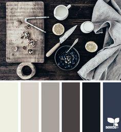 Foraged Hues Color Swatches, Color Themes, Colour Board, Color Palettes, Colour Pallete, Black Color Palette, Color Harmony, Color Balance, Colorful Decor