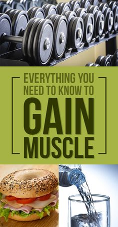 Here's Everything You Need To Know To Actually Put On Muscle
