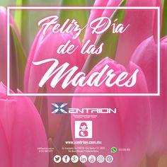 El Equipo de Xentrion S.A. de C.V. Felicita a todas Mamas de #Mexico  #graciasatimama   #MamaMeDiceSiempre #FelizMiercoles   Contáctanos info@xentrion.com.mx • 01 [55] 5662 6377  WhatsApp: [55] 1536 3103  Visítanos en nuestra Tienda Ubicada en: Insurgentes Sur 1768 P.B. • Col. Florida • Cp. 01030 • Del. Alvaro Obregón • Ciudad de México  www.xentrion.mx