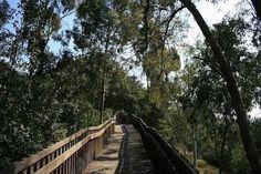 Culver City Nature Trail
