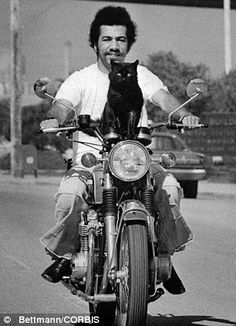 Karl Mitchell takes Mitten the Kitten, his 1 1/2 year-old black cat, for a ride. Mitten, perched on the handlebars, has ridden more than 1,000 miles with Karl