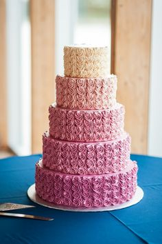 Sweet Thea Cakes - A European trained pastry chef & chocolatier, Thea (pronounced Tay-ah) has been creating dream cakes and delicious hand-made chocolates for over 15 years. Berry Wedding Cake, Wedding Cake Roses, Elegant Wedding Cakes, Pink Rosette Cake, Ombre Cake, Raspberry Buttercream, Raspberry Cake, Quinceanera Cakes, Quinceanera Planning
