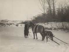 Richard Throssel  (Native American with horse pulling travois) by Museum of Photographic Arts Collections, via Flickr