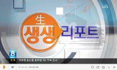 """2013년 4월 22일 오전 SBS뉴스 """"생생리포트""""에 학교폭력의 심각성을 알리는 내용이 방영되었습니다. 우리 모두가 학교 폭력이 빨리 근절될 수 있도록 많은 관심이 필요한 시점입니다."""