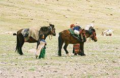 Tibetan car seats.