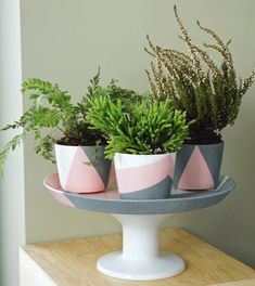 Using pink spray paint, geometric design, granite stone spray & potted plants! Diy Concrete Planters, Concrete Pots, Diy Planters, Spray Paint Ceramic, Pink Spray Paint, Spray Painting, Painted Plant Pots, Painted Flower Pots, Small Flower Pots