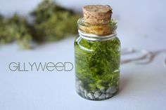 Gillyweed Necklace