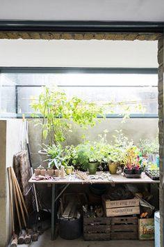 La cabane de jardinage, le secret pour avoir de belles plantes