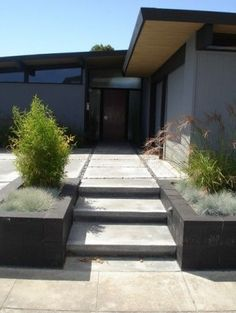 Foster City Eichler modern landscape and entrance
