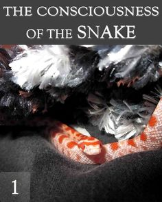 The Consciousness of the Snake - Part 1 « EQAFE