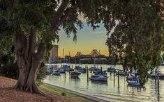 Scarica sfondi parco, fiume, yachts, brisbin, australia