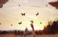 Frau versucht Schmetterlinge zu ergreifen und ihr Leben zu akzeptieren
