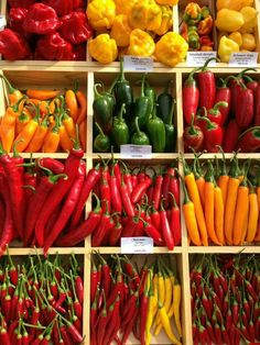 Hungary, assorted peppers at a market in Budapest_Hungary, vegyes paprikák egy … - Obst Fresh Fruits And Vegetables, Fruit And Veg, Spices And Herbs, Hungarian Recipes, Stuffed Hot Peppers, Farmers Market, Food Photography, Healthy Recipes, Hungary Food