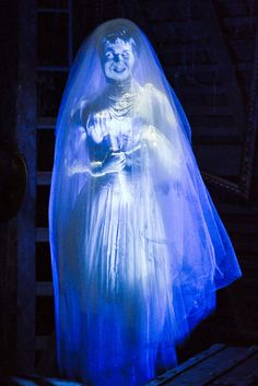 """Meet Constance Hatchaway (modeled by actress Julia Lee), the """"black widow bride"""". She can be found in the attic of The Haunted Mansion. Halloween Coffin, Halloween Ghosts, Happy Halloween, Disneyland Halloween, Halloween Projects, Halloween Costumes, Haunted Mansion Disney, Disney Rides, Disney Parks"""