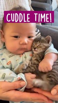 Cute Baby Animals, Cute Baby Cats, Super Cute Animals, Cute Cat Gif, Cute Little Baby, Cute Funny Animals, Animals For Kids, Animals And Pets, Funny Animal Videos