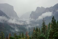 https://flic.kr/p/J4b7c9 | Umbrella View | It rained the entire day in Yosemite. The upside? Not as many people crowded around at Tunnel View! I enjoyed this view from underneath my umbrella.