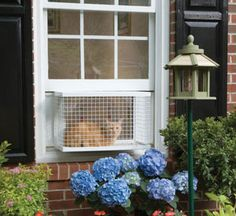 PPA00-10774 - PetSafe Cat Veranda Cat Door Wish I could think of a way to fit something like this in our windows that are hinged on the SIDE and open top to bottom at an angle.