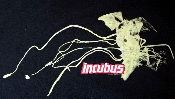 Incubus vintage concert t-shirt from their Make Yourself Tour in 1999. You had to have been at one of the concerts to get this vintage t-shirt!