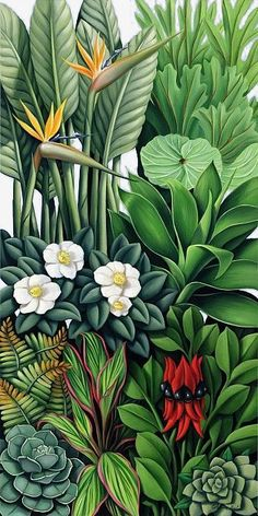 Catherine Abel Foliage II print for sale. Shop for Catherine Abel Foliage II painting and frame at discount price, ships in 24 hours. Cheap price prints end soon. Art Tropical, Tropical Flowers, Exotic Flowers, Art Floral, Arte Art Deco, Impressions Botaniques, Jungle Art, Inspiration Art, Art Design