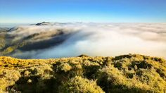 Prelude of Dreams (Mt. Pulag National Park) by bongbajo. It was first a dream. A dream thrown up like clouds in the skies. The chase pushed me to scale great heights. With each leap of imagination, excitement oozed inside me. One thing led to another, until this video came up to record the adventure.