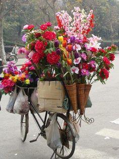 Fleurs sur une bicyclette. Photo source unknown.
