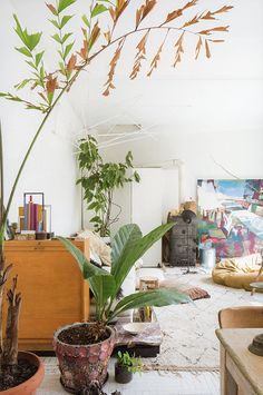 greenterior book / boho living room