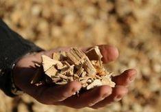 Holzpreis fair berechnen: Schüttraummeter, Atro-Tonne oder doch nach dem Heizwert: Die Abrechnung von Holz zur Energiegewinnung ist eine heikle Angelegenheit. Eine neue App schafft hier Abhilfe. Tonne, App, Chocolate, Food, Schokolade, Apps, Chocolates, Meals
