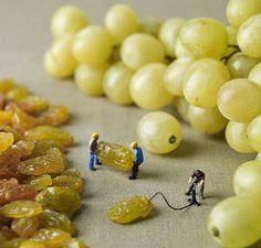 Inflando uvas!!! :-)
