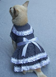 Double Layers Dotted Dog Dress