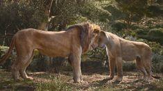 Simba by GiuseppeDiRosso on DeviantArt Lion King Remake, Lion King Fan Art, Lion King Movie, Disney Lion King, Beautiful Cats, Animals Beautiful, The Mighty Jungle, Disney Romance, Lion Africa