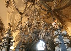 aw sweet a chandelier. MADE OF BONES.