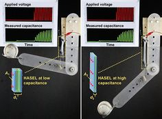 Power Strip, How To Apply, Electronics, Physicist, Inventions, Consumer Electronics