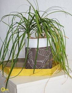 s 15 useful ways to reuse your leftover plastic bottles, A Self Watering Planter For Your Cactus