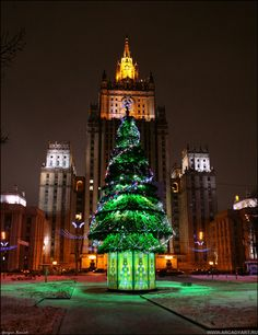 New Year Trees in Moscow, Russia   - Explore the World with Travel Nerd Nici, one Country at a Time. http://TravelNerdNici.com