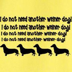 Weiner Dog T Shirts | Weiner Dog Shirts & Tee's - CafePress #doxie darlin' #Dachshund........(but maybe I do!)