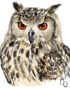 An Indian Eagle-owl speedpaint. Its eyes are disturbingly bitter and hateful. Drawn from photo reference found online.