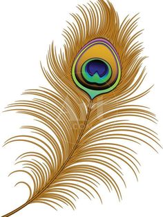 Feather Clip Art, Peacock Feather Tattoo, Feather Drawing, Feather Vector, Peacock Feathers Drawing, Peacock Vector, Feather Painting, Peacock Images, Peacock Art