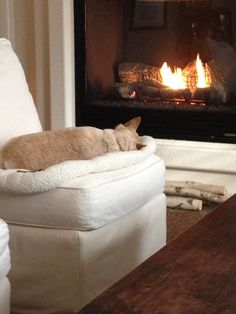 nothing like a warm fire and a comfy bed