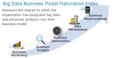 Big Data Business Model Maturation Index
