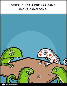 Why chameleons don't play poker