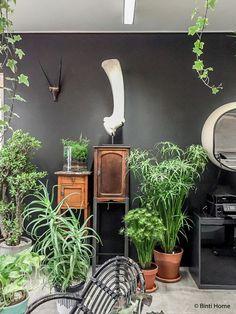 Groen wonen op z'n best, bij plantenwinkel vintage in Brussel // via BintiHome
