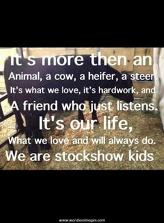 Stock show life. Stock show kids forever Farm Quotes, Cow Quotes, Country Girl Quotes, Animal Quotes, Show Cows, Show Cattle, Cattle Barn, Dairy Cattle, Farm Kids