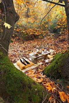 Autumn Picnic Hideaway
