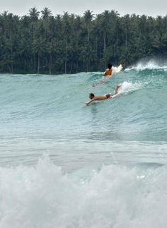 The Spot: Nias in Sumatra, IndonesiaThe Waves: On every surfer's must-visit list, Nias is notorious for its steep and powerful waves. The 2004 tsunami actually moved the reef so significantly that the surf became even better.
