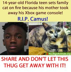 http://www.pawsforthenews.tv/1news/1featured-news/14-year-old-florida-teen-that-set-cat-on-fire-because-mother-took-his-x-box-away-petition/ We need to sign this petition so this teen will get some professional help.