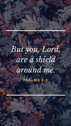 Bible Verse Of The Day:But you, Lord, are a shield around me. Biblical Quotes, Bible Verses Quotes, Bible Scriptures, Faith Quotes, Spiritual Quotes, Bible Verse Wallpaper, Encouragement, Favorite Bible Verses, God Loves Me