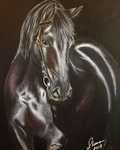 """53 Likes, 4 Comments - Sheena Martinez  (@sheenasfineart) on Instagram: """"Black Stallion. Just a few more finishing touches. Reference photo by Loshadenok / Dreamstime.com .…"""""""