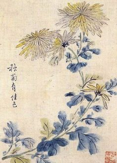 (Korea) Autumn chrysanthemum by Gang Se-hwang brush watercolor on paper. Asian Flowers, Chinese Flowers, China Painting, Silk Painting, Korean Art, Asian Art, Chinoiserie, Chrysanthemum Drawing, Chinese Painting Flowers