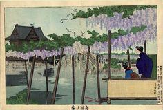 Kiyochika. The Iris Garden