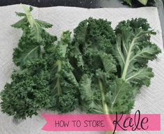 How to Store Kale Ho